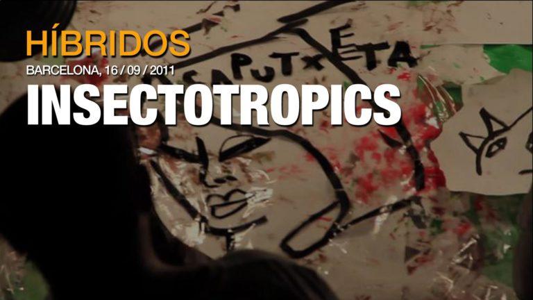 erva_titular_insectotropics